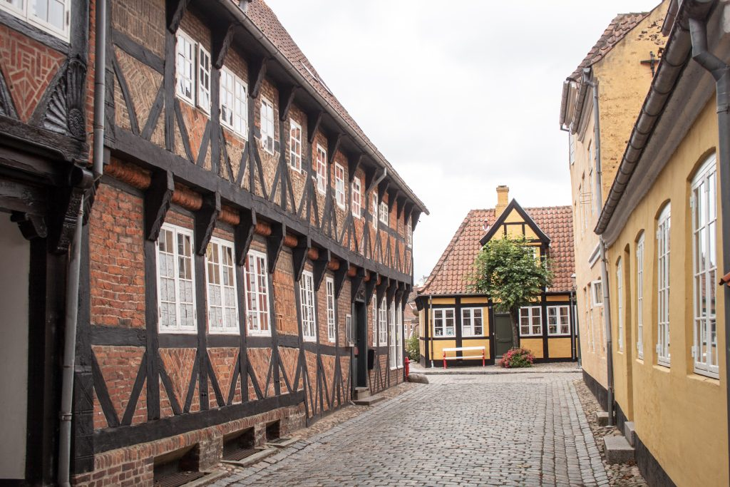 View of a street in Ribe, Denmark. Image source: www.commons.wikipedia.org